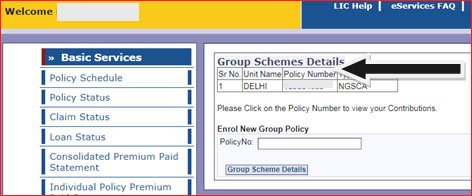 Term insurance Policy number in LIC Login